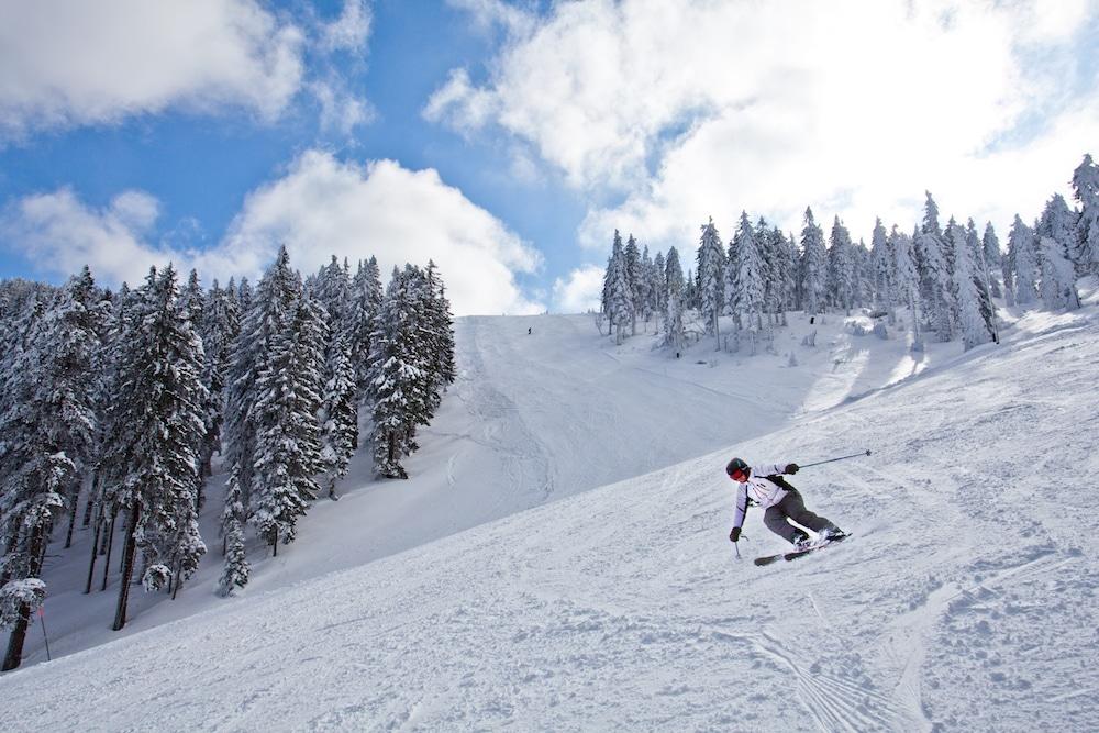 סקי בסלובניה - האתרים הכי שווים